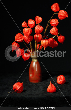 Bouquet with dry orange flowers stock photo, Bouquet with dry orange flowers in vase on black background. Close-up. Studio photography. by Andrey Khritin
