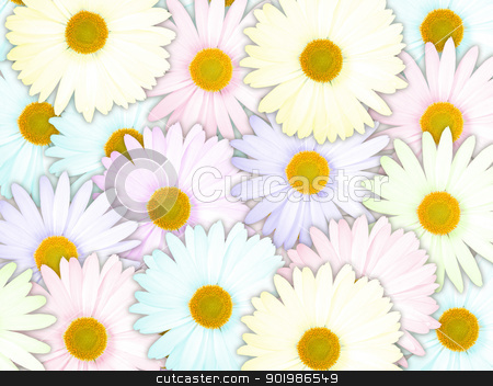Background of motley flowers stock photo, Abstract background of motley flowers for your design. Close-up. Studio photography. by Andrey Khritin