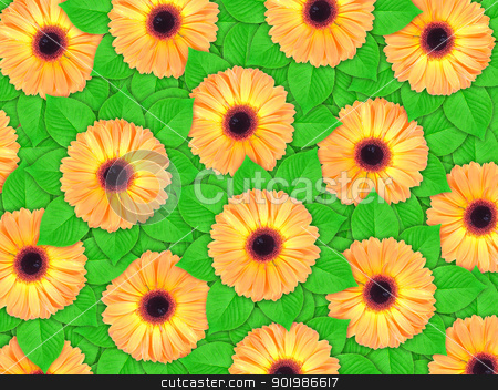 Background of orange flowers and green leaf stock photo, Abstract background of orange flowers and green leaf for your design. Close-up. Studio photography. by Andrey Khritin