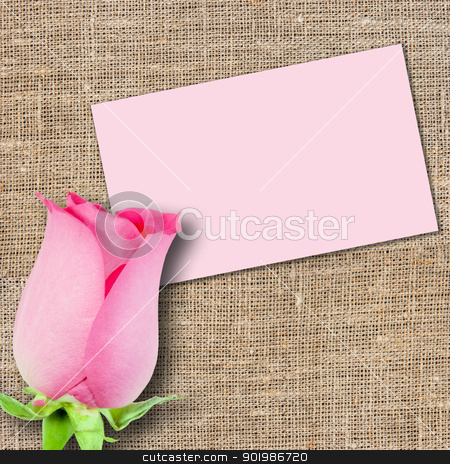 One pink rose and message-card stock photo, One pink rose and message-card on textile background. Close-up. Studio photography. by Andrey Khritin