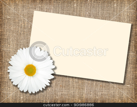 One white flower with message-card stock photo, One white flower with message-card on  textile background. Close-up. Studio photography. by Andrey Khritin