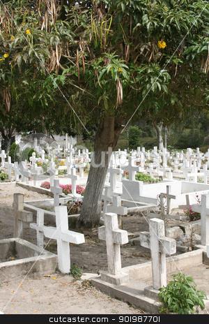 Crosses in an Ecuadorian Cemetery stock photo, White crosses in an Ecuadorian Catholic Cemetery with a fruit tree in Cotacachi, Ecuador by Robert Hamm