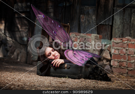 Sleeping Fairy stock photo, Faery in rustic scene sleeps in suitcase with black roses  by Scott Griessel