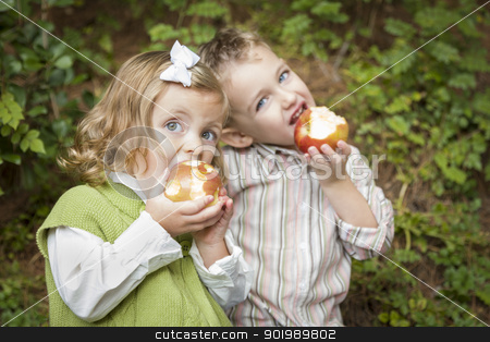 Adorable Brother and Sister Children Eating Apples Outside stock photo, Adorable Brother and Sister Children Eating Big Red Apples Outside. by Andy Dean