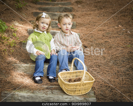 Two Children on Wood Steps with Basket of Pine Cones stock photo, Adorable Brother and Sister Children Sitting on Wood Steps with Basket of Pine Cones. by Andy Dean