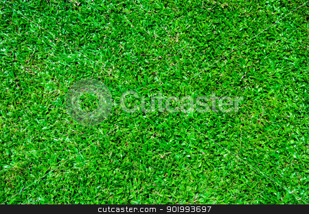 Lawn stock photo,  by aoo3771