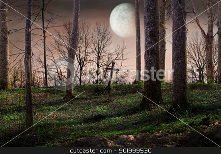 Night with a full moon over the cemetery stock photo, Night with a full moon over the cemetery by ARNIS LAZDINS