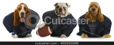 football team stock photo, football team -  by John McAllister