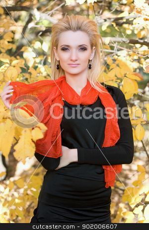 Portrait of a young woman stock photo, Portrait of a young woman amongst the autumn leaves by Sergii Sukhorukov