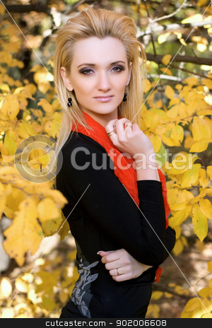 blonde amongst the autumn leaves stock photo, Portrait of a young blonde amongst the autumn leaves by Sergii Sukhorukov