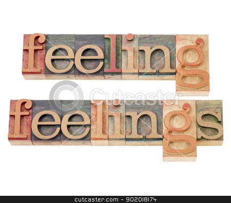 feelings in wood type in wood type stock photo, feeling and feelings words - isolated text  in vintage letterpress wood type by Marek Uliasz