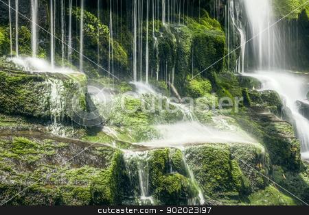 Tasmanian Waterfall stock photo, An image of a beautiful Tasmanian Waterfall by Markus Gann