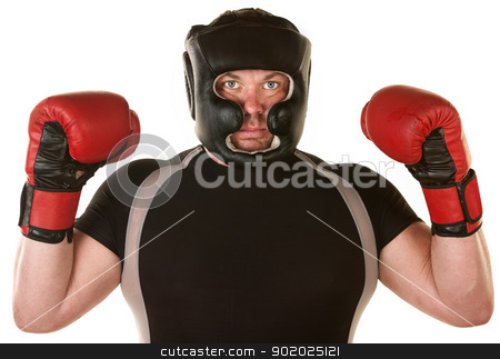 Muscular Boxer with Gloves stock photo, Muscular boxer over white background with fist gloves up by Scott Griessel