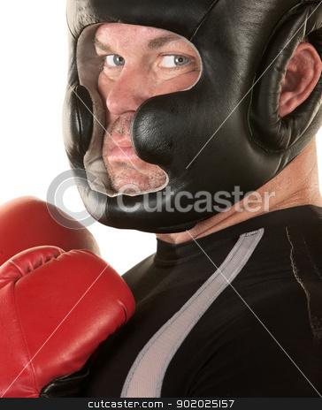 Tough Boxer Staring stock photo, Tough boxer over white background looking over by Scott Griessel