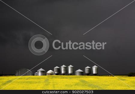 Storm Clouds Saskatchewan stock photo, Storm Clouds Saskatchewan Canola field yellow color by Mark Duffy