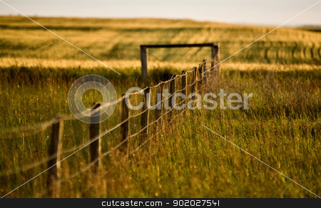 Prairie Fence Line stock photo, Prairie Fence in Summer in Saskatchewan Canada by Mark Duffy
