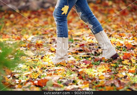 Walking through the autumn leaves stock photo, Walking through the autumn leaves, closeup by yekostock
