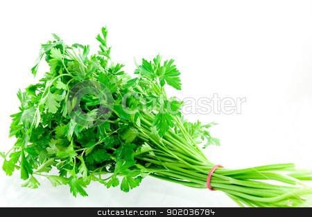 Parsley stock photo, Studio shot bundle of parsley  by elaplan