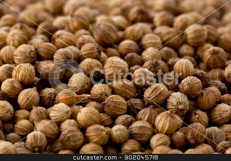 Coriander Seeds (Coriandrum sativum) stock photo, Background texture of several coriander seeds. by Glenn Price
