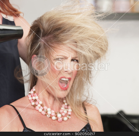Woman's Hair and Blow Dryer stock photo, Picky lady with messy hair and blow dryer by Scott Griessel