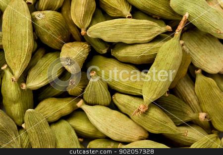 Green Cardamom (Elettaria cardamomum) stock photo, Background texture of green cardamom, or true cardamom. by Glenn Price