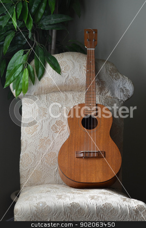 Baritone Ukulele stock photo, A brown wood baritone ukulele, sits on an upholstered chair with a planter in the background. by Maria Bell