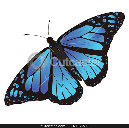butterfly stock vector clipart, butterfly wings colorful and variegated by Alfio Roberto Silvestro