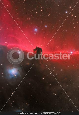 HorseHead Nebula stock photo, dark nebula in constellation Orion by Reinhold Wittich
