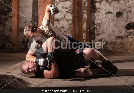 Martial Artist Punching Man on Ground stock photo, Aggressive MMA fighter punching opponent on the ground by Scott Griessel