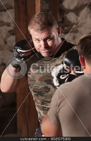 Mixed Martial Artist Throws Jab stock photo, Strong mixed martial artist jabbing at opponent by Scott Griessel