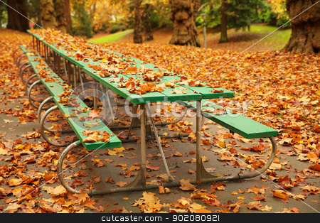 Long autumn picnic table stock photo, Long autumn green picnic table covered with fall leaves in a park by bobkeenan