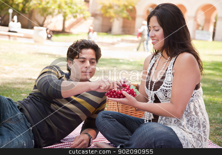 Attractive Hispanic Couple Having a Picnic in the Park stock photo, Attractive Hispanic Couple Having a Picnic Outdoors in the Park. by Andy Dean