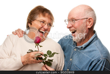 Happy Senior Husband Giving Red Rose to Wife stock photo, Happy Senior Husband Giving Red Rose to Wife Isolated on a White Background. by Andy Dean