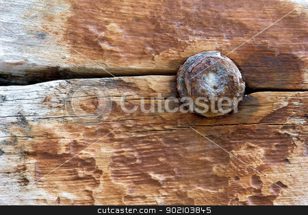 Rusty Texture stock photo, Macro shot of and old wood boat from yucatan. by Javier Correa