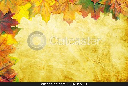 maple leaves stock photo, autumn maple leaves on grunge background  by Vitaliy Pakhnyushchyy