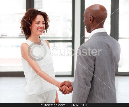 Business people shaking hands in agreement stock photo, Young business people shaking hands in agreement by Wavebreak Media