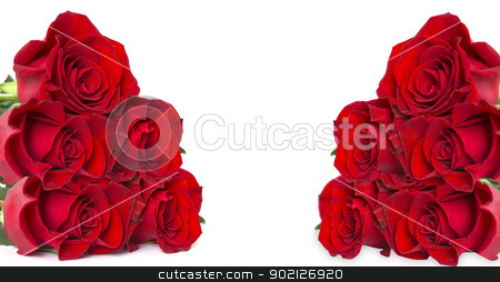 red roses stock photo, Close-up shot of a red roses by Vitaliy Pakhnyushchyy
