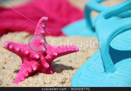 Funny pink starfish on the seacost stock photo, Funny starfish on the beach  by Tatiana Mihaliova