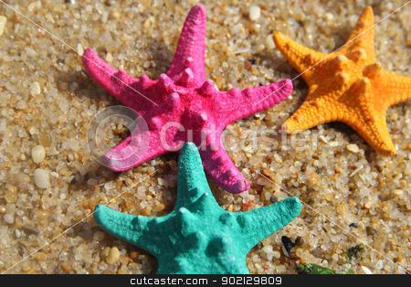 Funny vivid starfishes  stock photo, Funny starfishes on the beach  by Tatiana Mihaliova