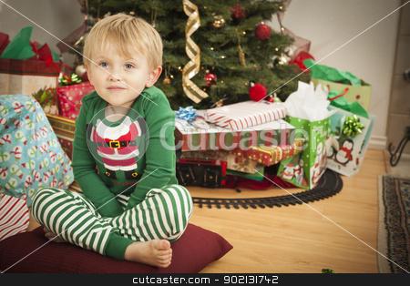 Young Boy Enjoying Christmas Morning Near The Tree stock photo, Cute Young Boy Enjoying Christmas Morning Near The Tree. by Andy Dean