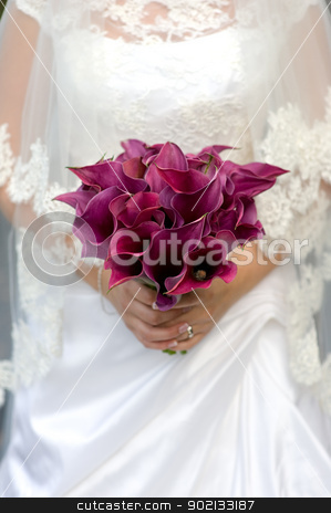 bride and bouquet of lilies stock photo, bride holding a bouquet of purple lily flowers by Lee Avison
