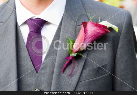 groom wearing a lily buttonhole stock photo, groom wearing a purple lily buttonhole by Lee Avison