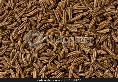 Caraway Seeds (carum carvi) stock photo, Background texture of caraway seeds. by Glenn Price