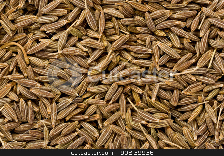 Cumin Seeds (Cuminum cyminum) stock photo, Background texture of whole cumin seeds. by Glenn Price
