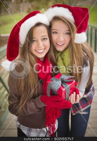 Two Smiling Women Santa Hats Holding a Wrapped Gift stock photo, Two Attractive Festive Smiling Mixed Race Women Wearing Christmas Santa Hats Holding a Wrapped Gift with Bow Outside. by Andy Dean
