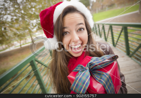 Pretty Woman Wearing a Santa Hat with Wrapped Gift stock photo, Pretty Festive Smiling Woman Wearing a Christmas Santa Hat with Wrapped Gift and Bow Outside. by Andy Dean