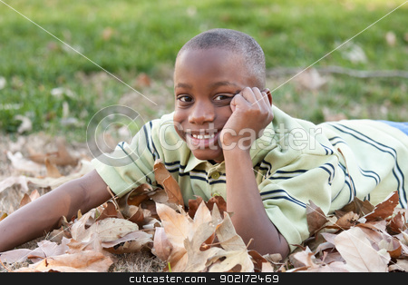 Young African American Boy Playing in the Park stock photo, Young Handsome African American Boy Playing in the Park Among the Leaves. by Andy Dean