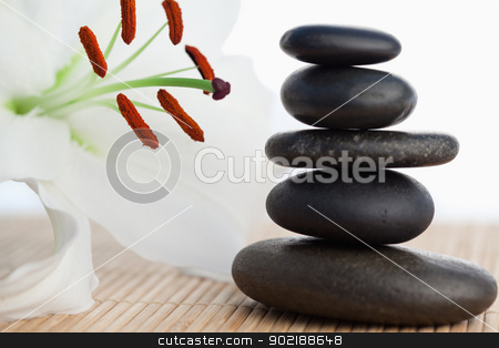 A white hibiscus beside a stack of black stones stock photo, A white hibiscus beside a stack of black stones by Wavebreak Media
