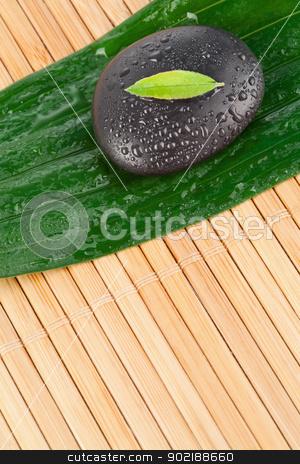 A small leaf on a black stone on a bigger leaf stock photo, A small leaf on a black stone on a bigger leaf by Wavebreak Media