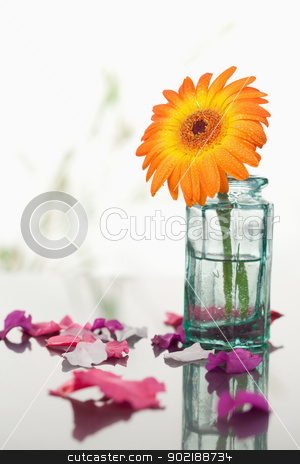 Pink petals and leaves with orange gerbera in a glass flask stock photo, Pink petals and leaves with orange gerbera in a glass flask focus on the petals and the flask with the flower in it by Wavebreak Media